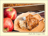 The pilgrims planted the first United States apple trees in the Massachusetts Bay Colony.